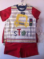 Комплект TWETOON Для мальчиков Футболка+шорты 116031 Flexi Турция