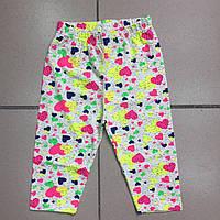 Детская  одежда оптом Бриджи для девочек оптом размеры 2-7 лет