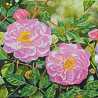 """Схема для вышивки бисером на художественном холсте """"Плетистая роза"""""""