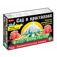 Набор для опытов Сад в кристаллах Creative 12138011Р