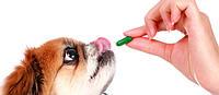 Витамины для животных