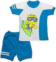 Футболка и шорты на мальчика с рисунком