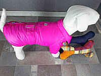 Плащ Dogs Bomba K-4 размер 4(S), фото 1