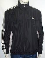 Кофта спортивная мужская Adidas