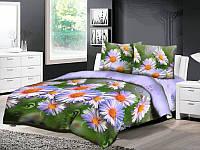 Двухспальный комплект постельного белья Ранфорс Ромашки Фиолетовые