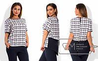 Женская блуза креп-шифон в клетку короткий рукав с удлиненным задом Размеры: 48, 50, 52, 54, 56