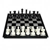 Шахматные фигуры №5677