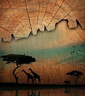 "Фотообои ""Африка"", Фактурная текстура (холст, иней, декоративная штукатурка)"