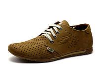 Туфли спортивные Lacoste, мужские, кожаные, бежевые, фото 1