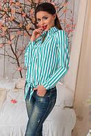 Блузка-рубашка в полоску  (3 цвета) 1011