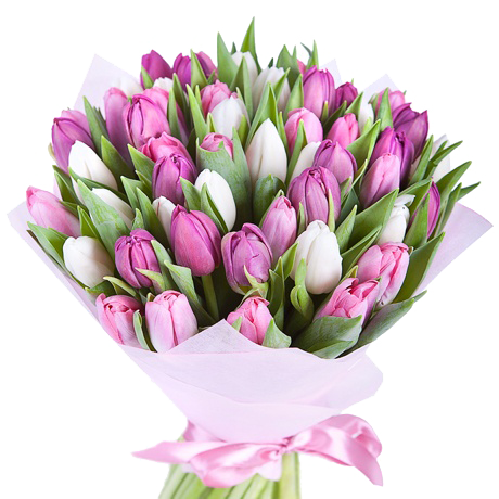 Редкие цветы и каталог
