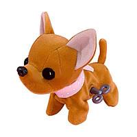 """Мягкая игрушка «Chi Chi Love» (5890297) собачка Чихуахуа """"Sweet Snappy"""" с заводным механизмом, 13 см"""