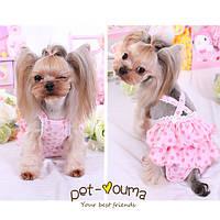 Платье для собак 1