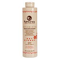 Tecna Colour Keeper Acid Care Therapy Superblonde Hot Shampoo Шампунь для сохранения теплых блонд тонов 250мл
