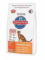 Hills Science Plan Optimal Care Adult с мясом ягненка 10 кг