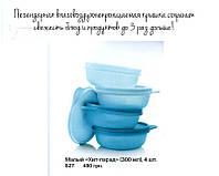 Набор  мисок (300мг) для хранения и транспортировки продуктов от Tupperware®