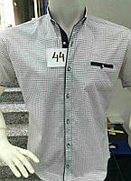 Летняя мужская рубашка в мелкий горошек