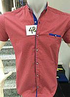 Молодежная мужская рубашка с коротким рукавом