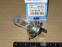 Лампа головного света H4 P43t 24V 100/90W
