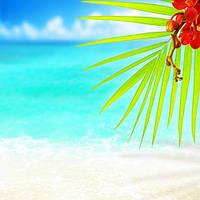 """Фотообои """"Цветущая ветка на пляже"""", Фактурная текстура (холст, иней, декоративная штукатурка)"""