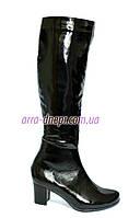Зимние женские сапоги из натуральной лаковой кожи черного цвета