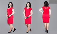 Платье женское нарядное короткий рукав стрейч коттон + гипюр Размеры : 48,50,52,54,56,58