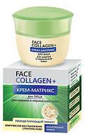 Белита FACE Collagen+ Крем-матрикс для лица для жирной и нормальной кожи
