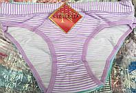 Набор трусиков для девочки хорошего качества 2005.18