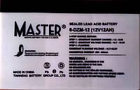 Вело аккумулятор Master 6DZM12