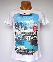 Мужская брендовая футболка Back of Mountain - №1446