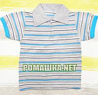 Детская футболка-поло для мальчика р.110 ткань КУЛИР-ПИНЬЕ 100% тонкий хлопок ТМ Мир Детства 3108 Светло-Серый