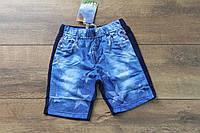Трикотажные шорты для мальчиков 1 год