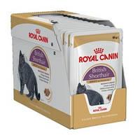 Упаковка Royal Canin British Shorthair Adult -Влажный корм для британских короткошерстных кошек, 85г