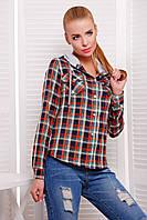 Женские блузки и рубашки   блуза Коломбо д/р