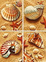 """Картины по номерам «Schipper» (9340654) художественный творческий набор-полиптих """"Ракушки на песке"""", 4 картины по 18х24 см"""