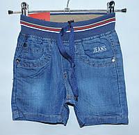 Шорти для хлопчика  2-7 лет Merkiato джинсові