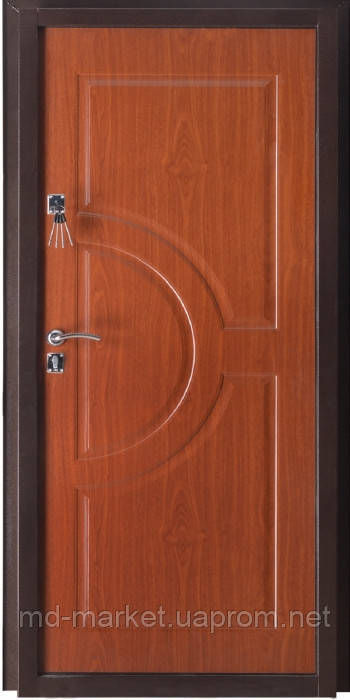 теплые металлические двери нестандарт
