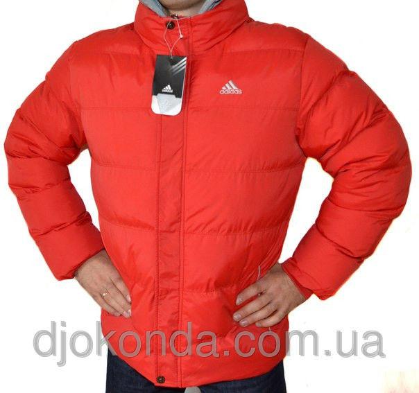 Зимние куртки мужские 2017