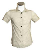 Рубашка мужская Desibel