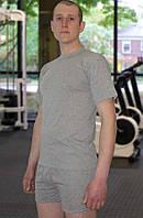 Мужская футболка (Серый)