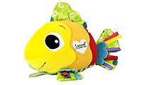 Развивающая игрушка для малышей Золотая рыбка Lamaze