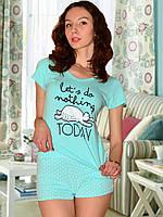 Пижама (футболка и шорты) (Бирюзовый)