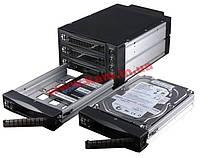 Корзина горячей замены SATA3/ SAS2, черная (Отсеки: 2x 5.2 (ST-2131SS SATA /SAS, black 2/3 HDD RoHS)