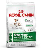 Royal Canin MINI STARTER - первый твердый корм для щенков мини пород 1кг