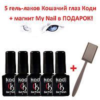 Набор гель-лаков кошачий глаз Коди 5шт, 7мл + магнит My nail в подарок