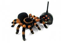 Паук Тарантул Радиоуправляемая Игрушка