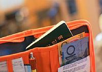 Многофункциональный органайзер для документов и т.д. (Оранжевый, серый)