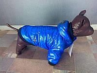 Куртка для собачек Dogs Bomba KR-1 размер 4(S)синяя
