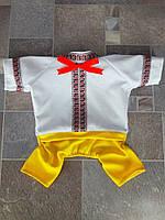 "Костюм для йорка ""Вышиванка"" Dogs Bomba размер-3(XS2)желтый"