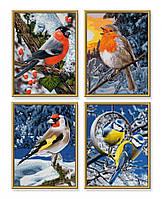 """Картины по номерам «Schipper» (9340661) художественный творческий набор-полиптих """"Зимние птицы"""", 4 картины по 18х24 см"""